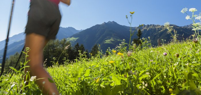 Hike on the Sonnenberg in South Tyrol, Hotel Tyrol
